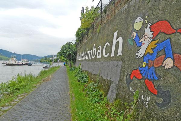 Велосипедная дорога по берегу Рейна