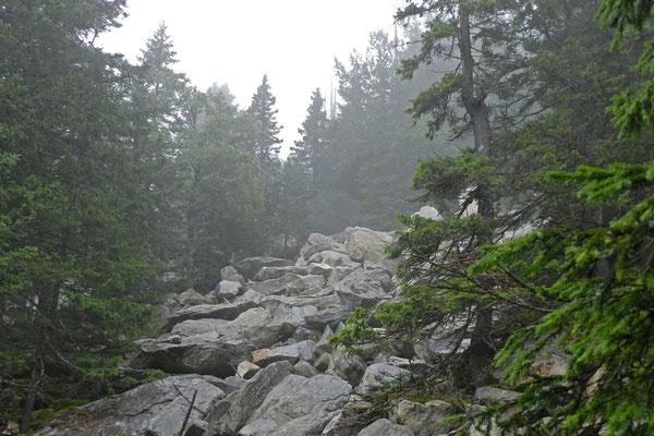 Steinwälle unterhalb des Gipfels