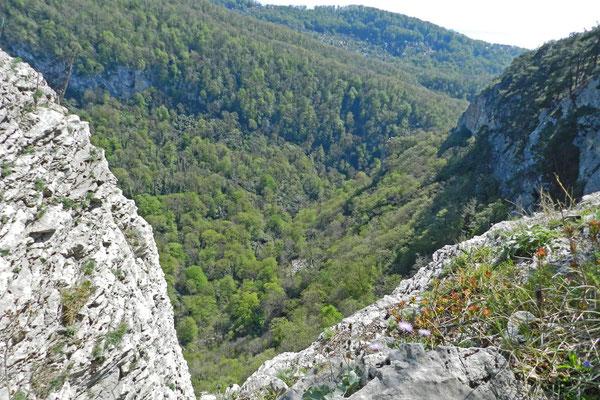 Blick von der Felskante hinunter in die Aguraschlucht