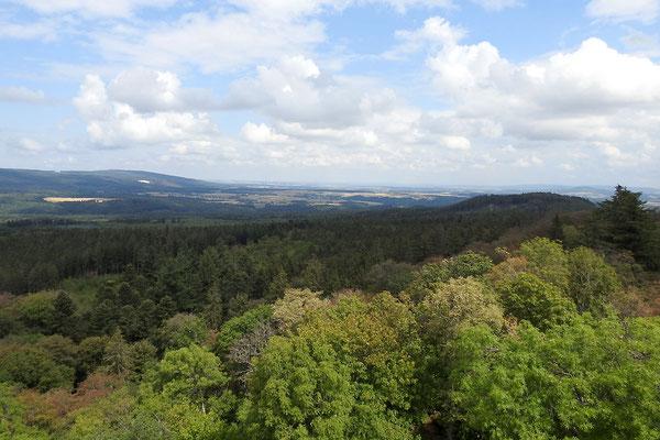 Вид с башни Вильденбурга.