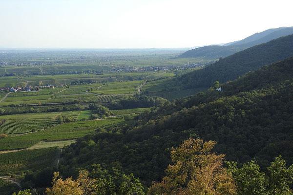Вид с Гамбахского замка на юг