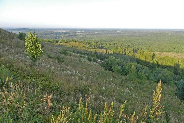 Aussicht auf Hügel, Wälder und Wiesen