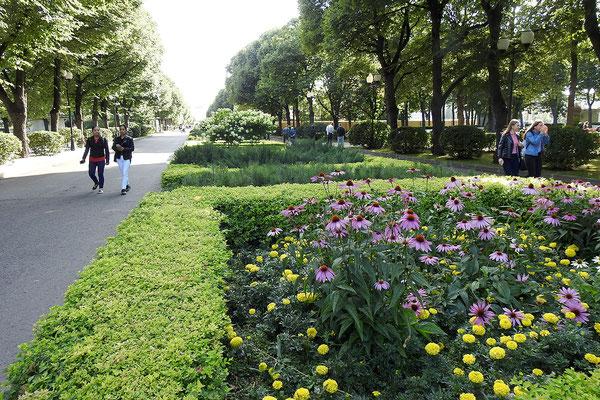 Auf einem der zentralen Wege des Parks