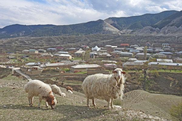 Begegnung am Straßenrand in Dagestan