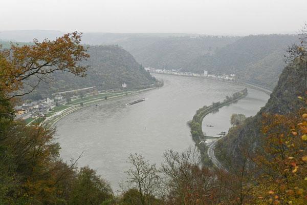 Туманный осенний день над Рейном