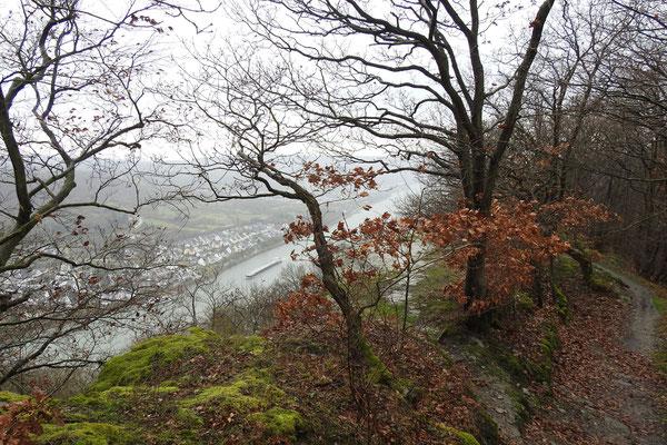 Зима на Рейне