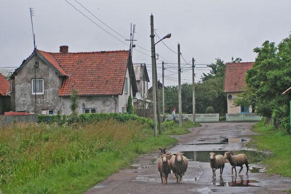 Tristesse in Rybatschi an einem trüben Regentag.