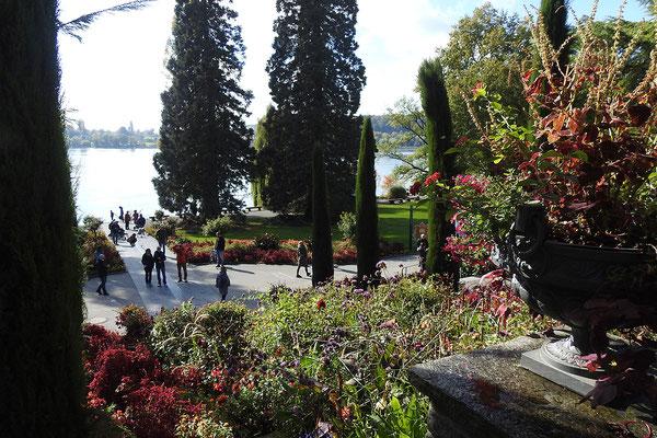 На остров цветов гости приезжают со всего мира