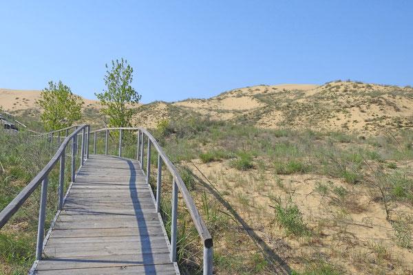 Besucher müssen auf dem Bohlenweg bleiben.
