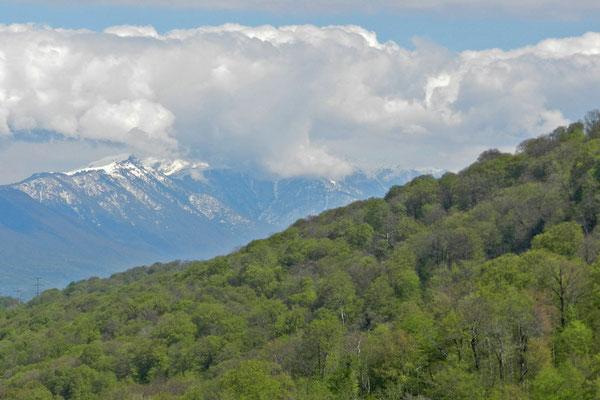 Bis zu 3.000 Meter hoch sind die Berge im westlichen Kaukasus.