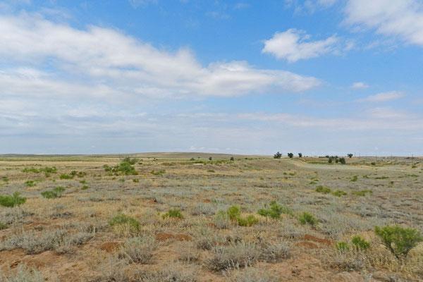 Halbwüsten prägen die Landschaft ringsum