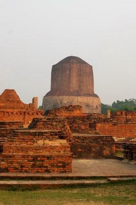 De grote stupa in Sarnath