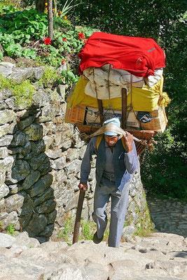 De vrachtwagen van de bergen: naast de yak is dit het enige transportmiddel