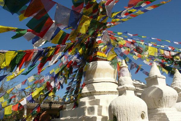 Nammo Bouddha
