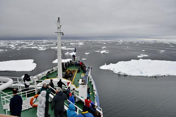 Varen door de Weddellzee
