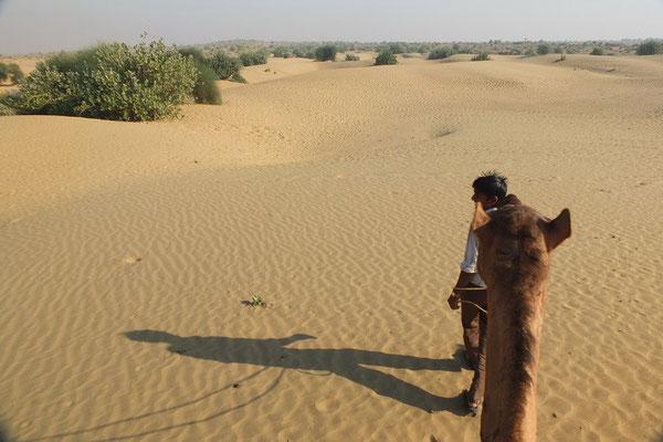 Op de dromedaris in de Thar woestijn