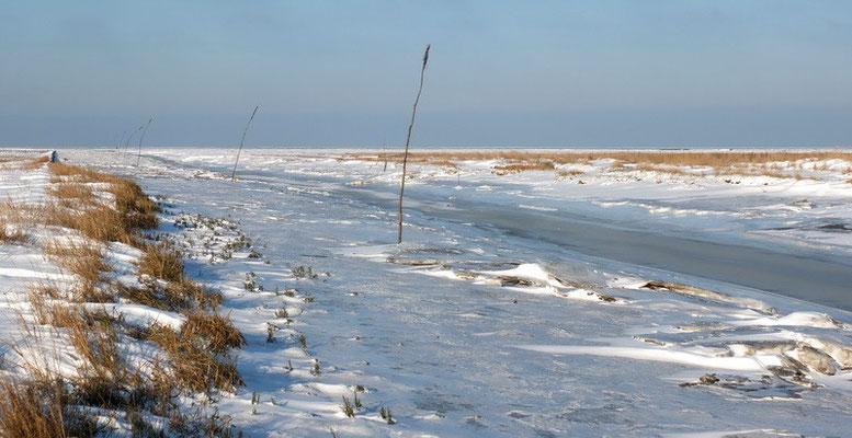De haven is dichtgevroren en je kunt een heel eind het wad op lopen.