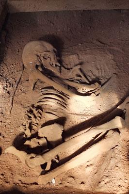 Pré Collumbiaans skelet