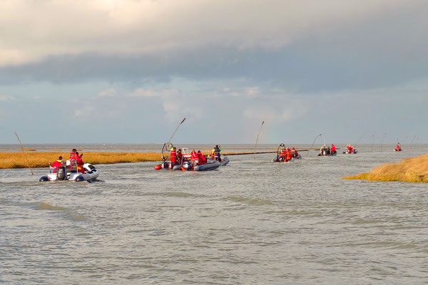 Bijzondere gasten verlaten de haven van Noordpolderzijl.