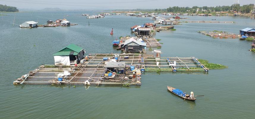 Drijvend dorp in de La Ngà rivier. De Cambodjaanse bewoners kweken rode snapper.