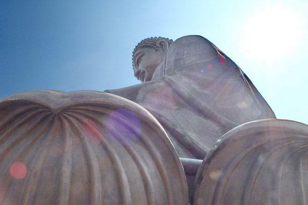 De Tian Tan Boeddha