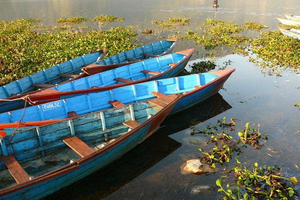 Bootjes in het Phewa meer