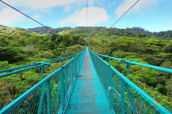 Het boomkroonpad in Monteverde