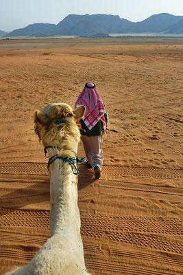 Het uitzicht vanaf een kameel