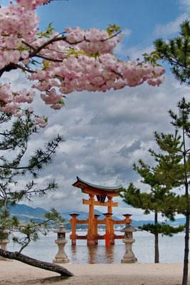 De grote torii (hemelpoort) op het eilandje Miyajima