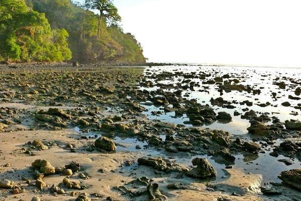 De kust bij Pangandaran