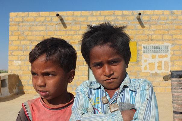Stoere gasten in de Thar woestijn