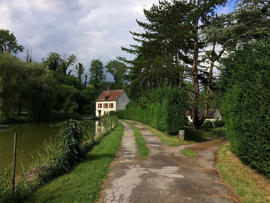 Chemin d'accès au moulin et au gîte
