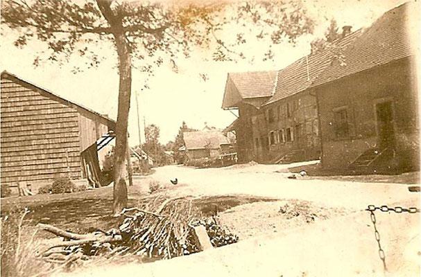 1950 rue des juifs