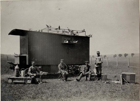 Brieftaubenstation, ca. 1917; Bildquelle: gemeinfrei, Austrian National Library, Kriegspressequartier Alben 1914 - 1918, ImageID 15529255