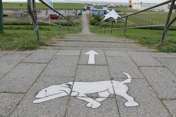 Der Hundewanderweg zum Meer