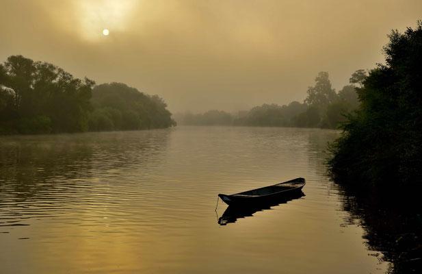 """Ein Nachen der """" Fischerzunft Seligenstadt """" treibt ruhig im Main, während sich der Nebel lichtet"""