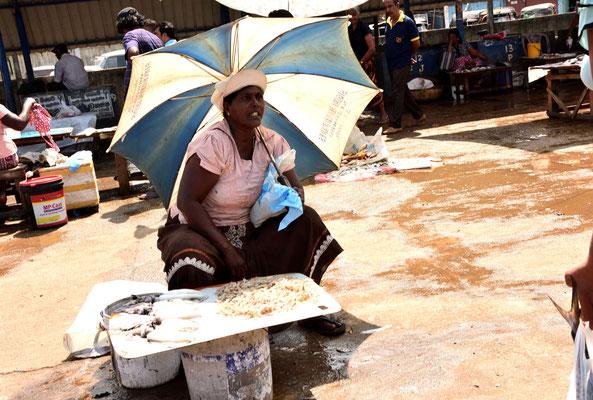 Der Fischmarkt von Negombo ist einer der größten auf Sri Lanka