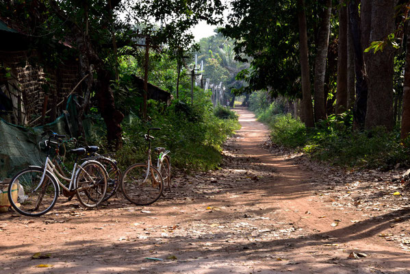 Bei Preah Ko, führt die Straße in den Wald