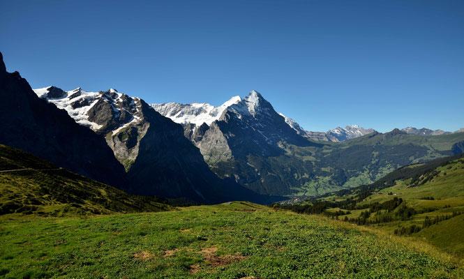 Panoramasicht von bei der großen Scheidegg