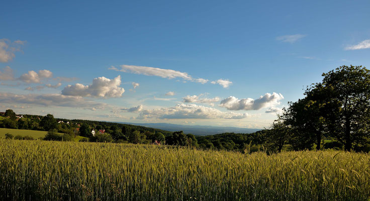 Vom Spessart reicht die Aussicht bis zum Odenwald.