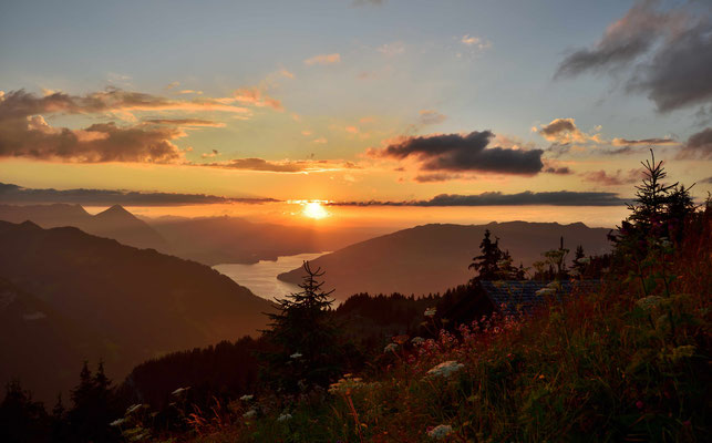 Sonnenuntergang über dem Brienzer See