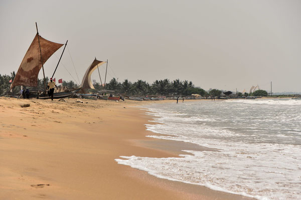 Am Strand von Negombo in Sri Lanka am frühen Morgen