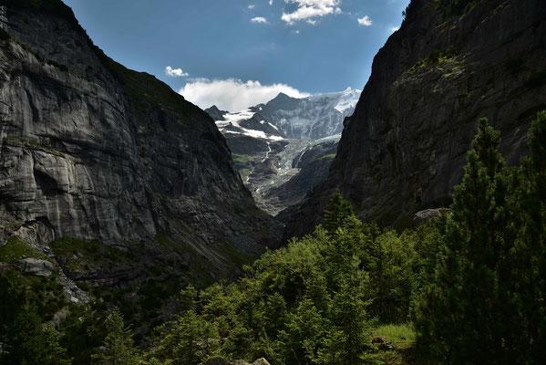 Im Tal des unteren Grindelwald Gletschers