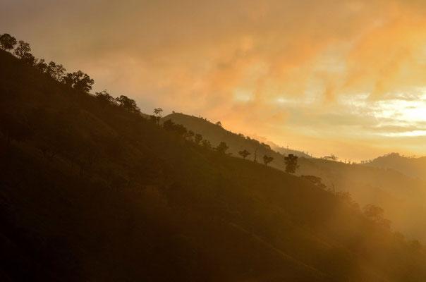 Morgenlicht in den Wolken an den Hängen der Ella Mountains