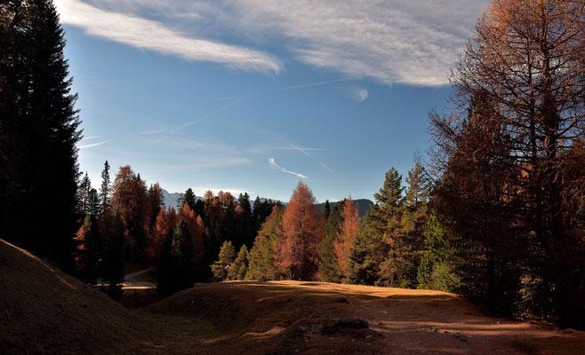 Herbstlicher Wald im Grödner Tal