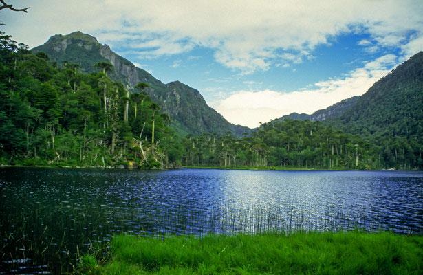 """Auf dem Rückweg kommt man an einen der vielen Seen vorbei. Der """" Sendero de Huerquenes"""" ist ein traumhafter Weg, durch eine phantastsiche Szenerie, ide ganz einsam ist."""