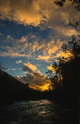 """In der Nähe von Puerto Montt ligt der National Park """" Alerce Andino """". Hier ist eine der letzten Habitate der Alercen. Diese werden Uralt, wurden aber rigoros Abgeholzt."""