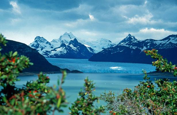 """Der """"Glaciar Dickson"""" erstreckt sich vom Inlandeisfeld bis in den Lago Dickson."""