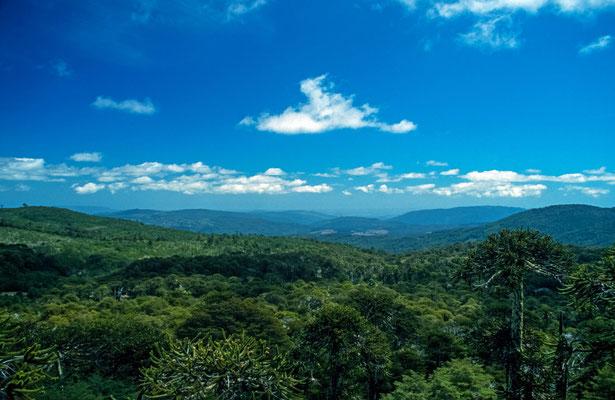"""Man kann bis zur """" Piedra de Aquila """" auf 1450 m wandern .Vom Adlerfelsen hat man eine traumhafte Aussicht. Hier wurde auch für """"Jurassic Park"""" gedreht."""