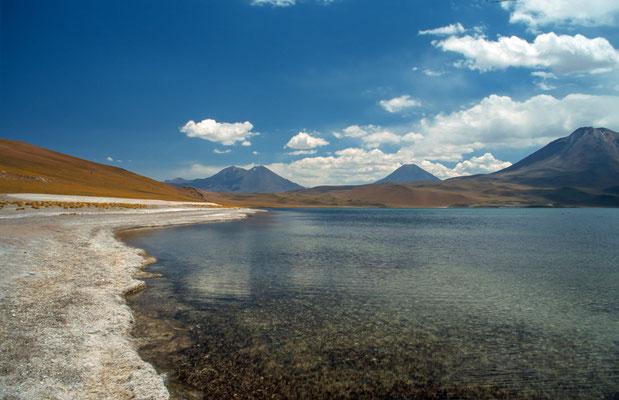 Eine der Lagunen am Cerro Miscanti und Cerro Miniques